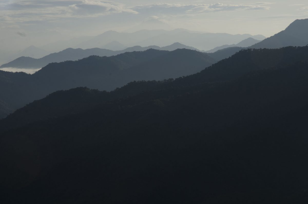 The Andes or La Cordillera Andina as seen from the Bellavista Reserve Road to the Research Station | ©Angela Drake