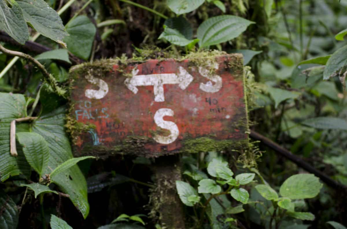 Trailmarker showing streams in every direction; Bellavista Reserve, Tandayapa, Ecuador | ©Angela Drake