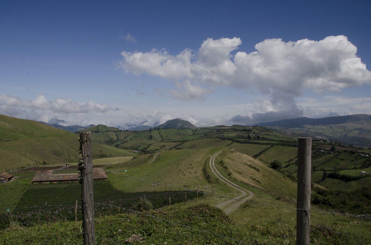 On the way to the Yanacocha Reserve, Pichincha, Ecuador
