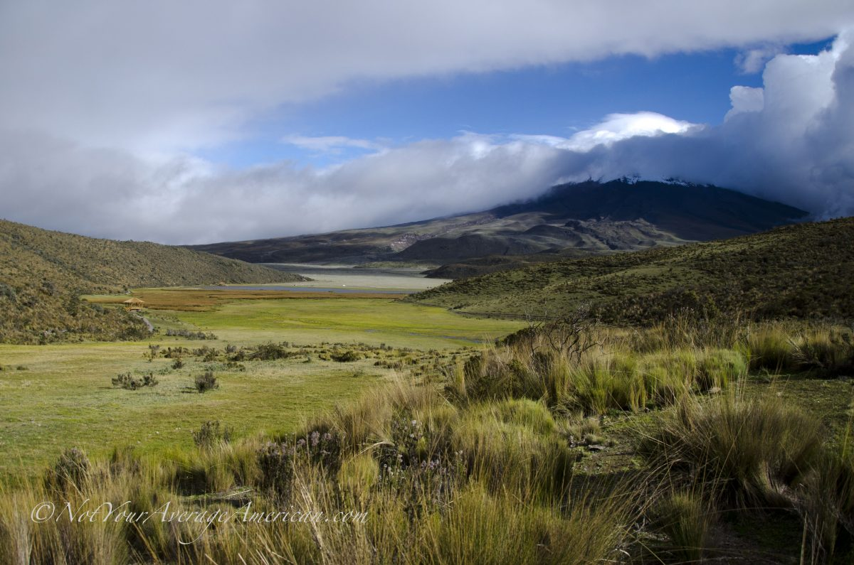 This is Cotopaxi from the trail at Limpiopungo | ©Angela Drake