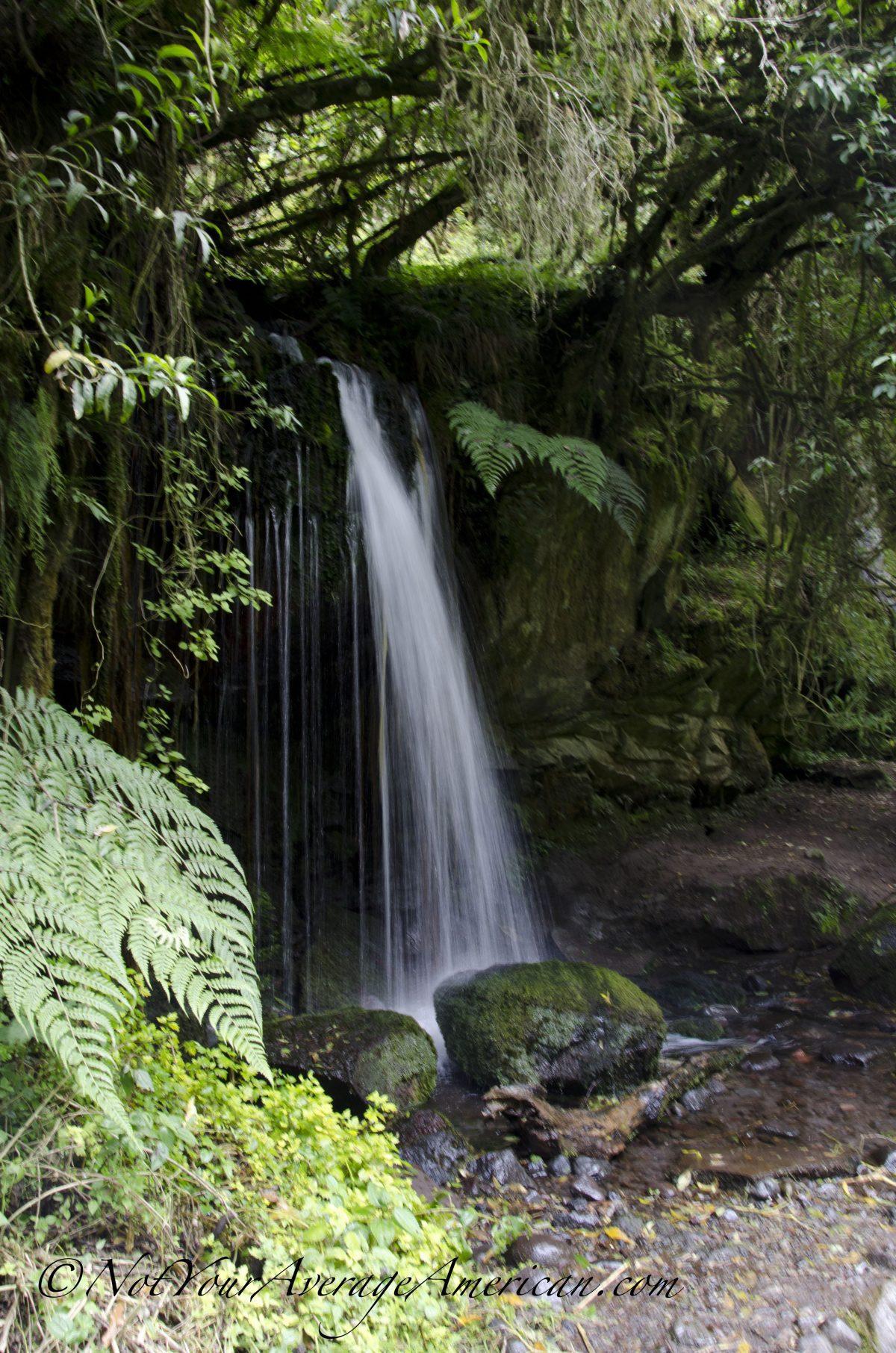Small Cascade, Cascada Condor Machay, Ecuador