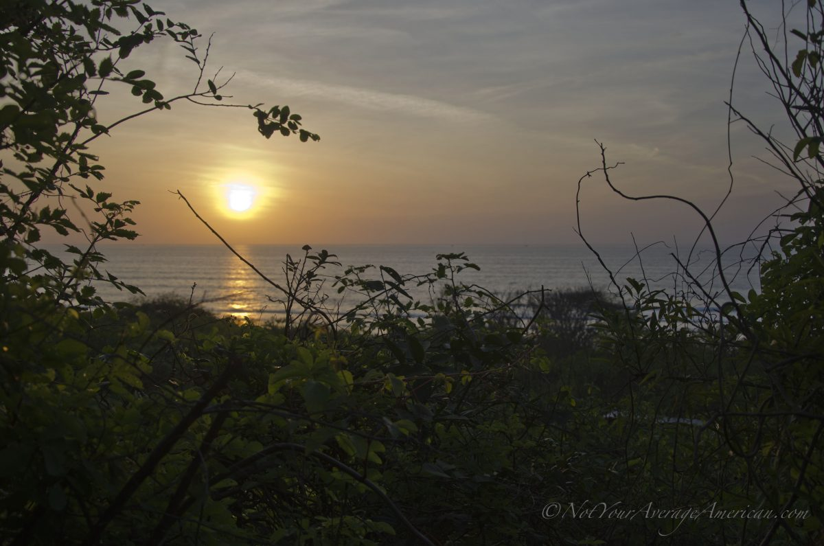 View of the Coast, Chirije Dry Forest, Coastal Ecuador