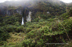 Cayambe-Coca National Reserve
