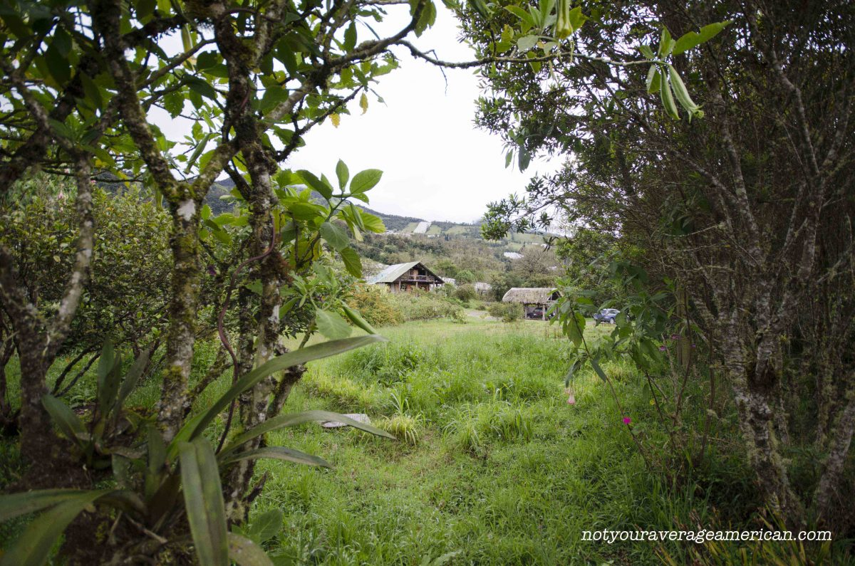 Looking from the cabin to the main farm house. On a clear day, you could see Tungurahua in the background; Panticucho, Baños, Ecuador | ©Angela Drake
