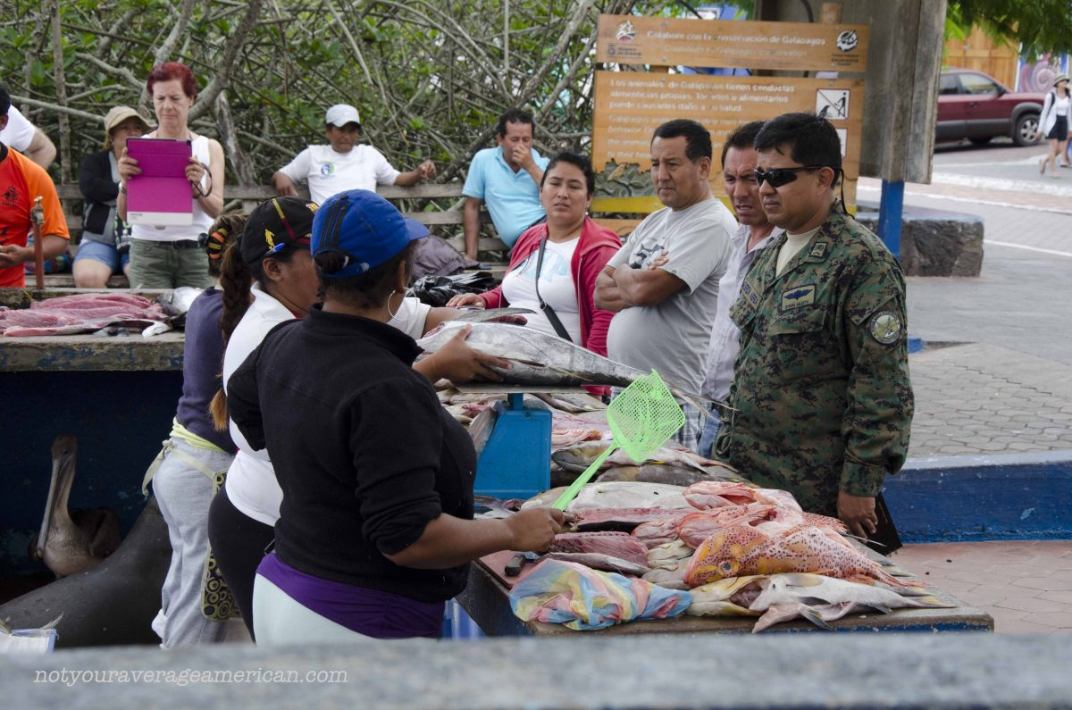 Locals wait to be served at this Galapagos Fish Market in Puerto Ayora, Santa Cruz, Ecuador | ©Angela Drake