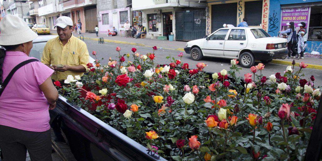 Rose Vendor