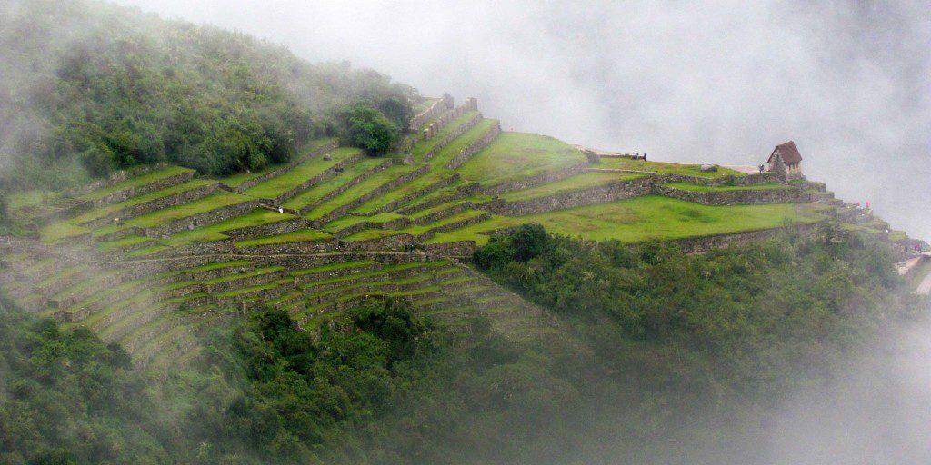Close up of Machu-Picchu terraces