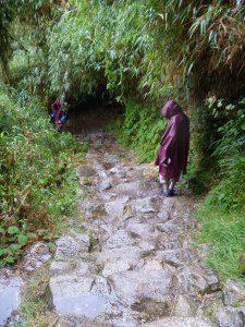 Author hiking downhill
