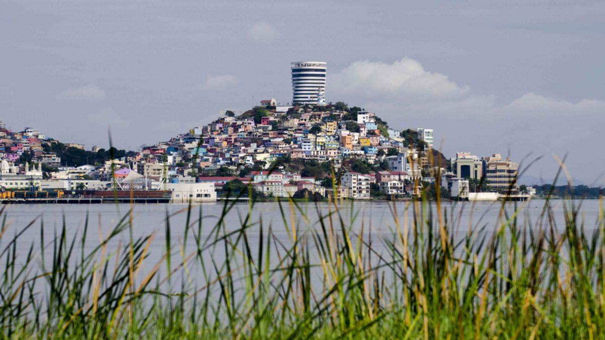 View of Cerro Santa Ana from Isla Santay, Guayaquil, Ecuador | ©Angela Drake