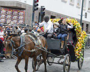 Carriage in the Caceria del Zorro parade