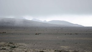 High Paramo of Chimborazo