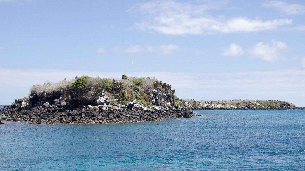 North Plaza Island