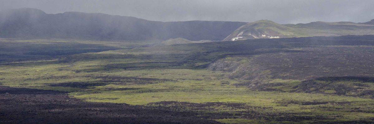Volcan Sierra Negra, Isla Isabela