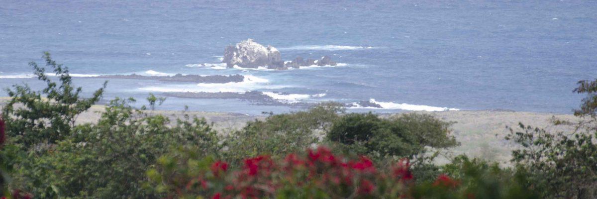 An Organic Farm on the Galapagos