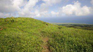Trail around El Junco