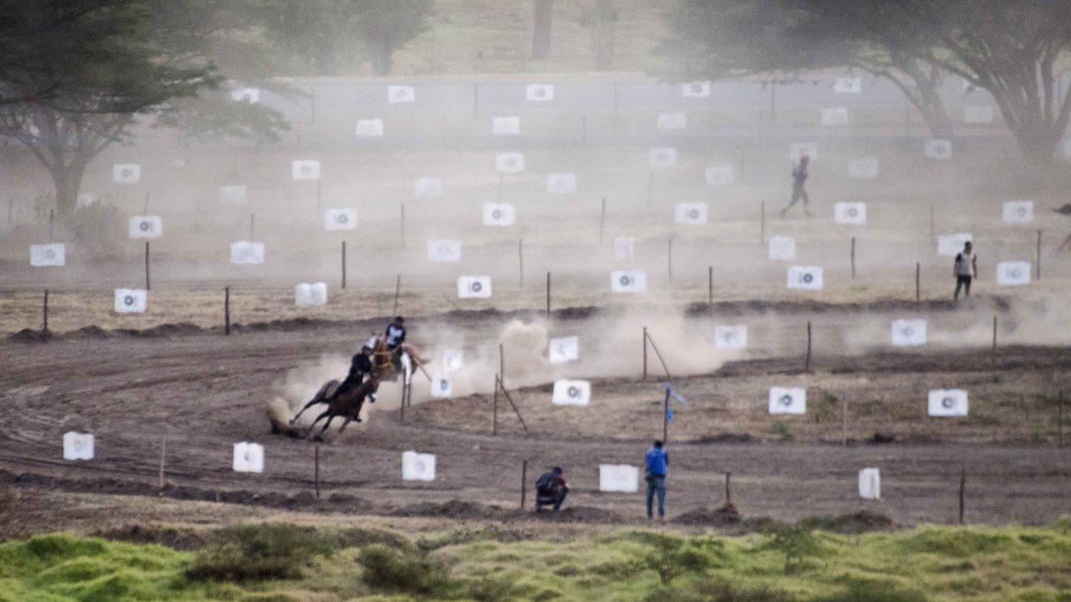 Final Race in the Cacería del Zorro, 2015 | ©Angela Drake