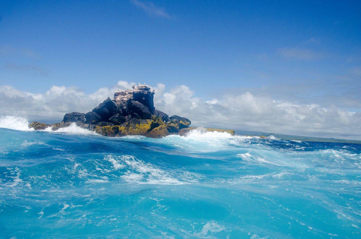 Best Photos from Isla Isabela, Galapagos Islands