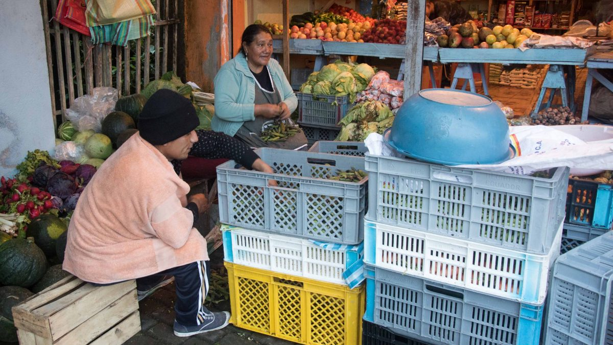 Morning Market, Pacto, Ecuador