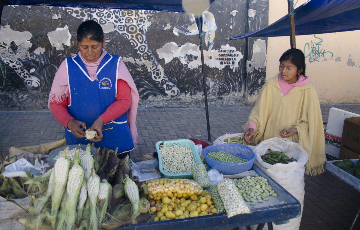 Vendor Shucking Corn, La Floresta, Quito, Ecuador | ©Angela Drake