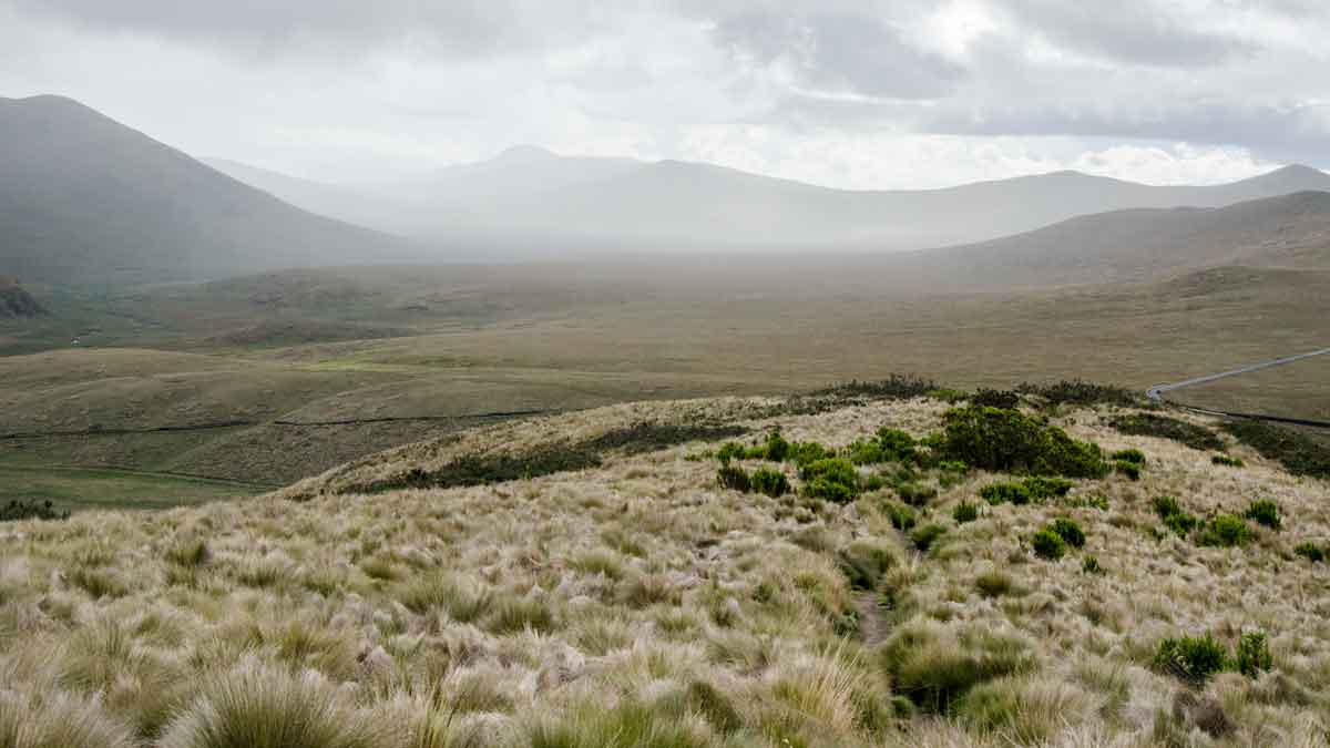 Hills in the Antisana Conservation Area   ©Angela Drake