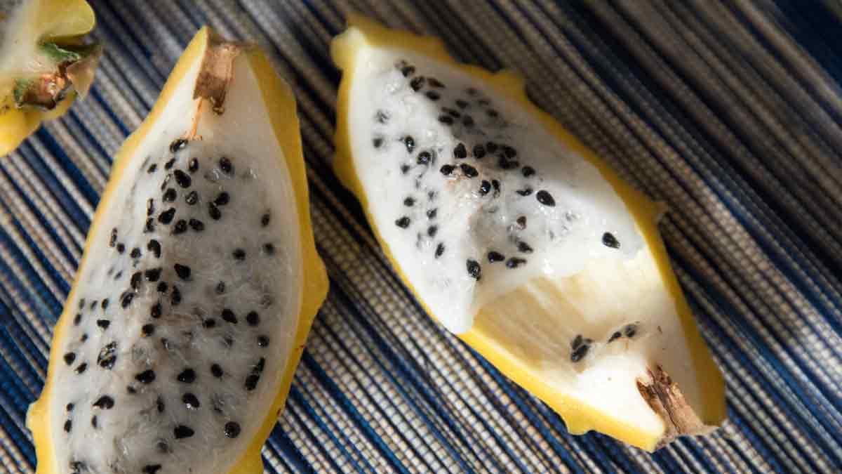 Quartered pitahaya (dragon fruit) with a missing bite | @Angela Drake