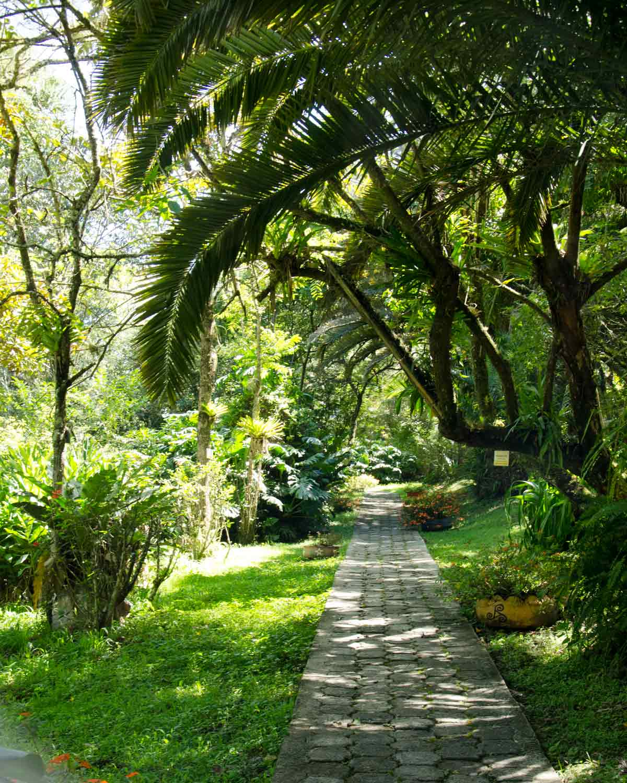 Garden Path, Botanical Garden in Loja, Ecuador | ©Angela Drake