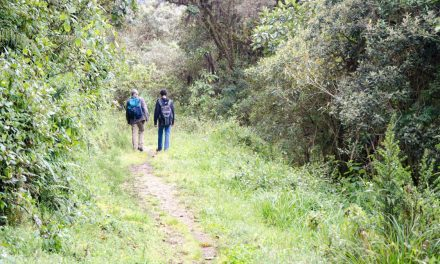 Basic Questions To Ask When Hiring a Guide in Ecuador