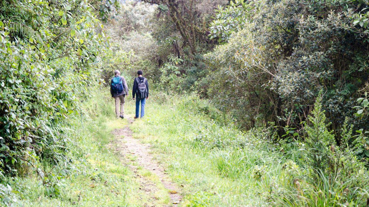 Exploring the Yanacocha Reserve near Quito, Ecuador   © Angela Drake