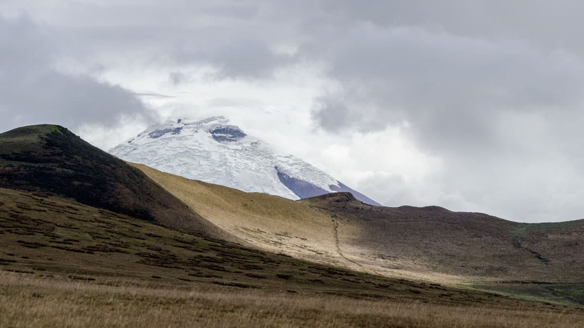 The Volcano Antisana taken along the road in the Antisana Ecological Reserve, Ecuador   June 2016   © Angela Drake