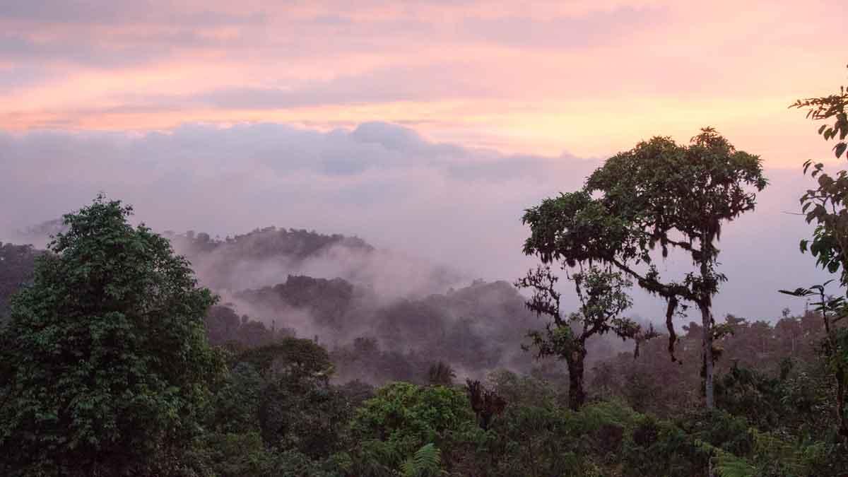 Sunset from the Refugio Angel Paz near Mindo, Ecuador | ©Angela Drake