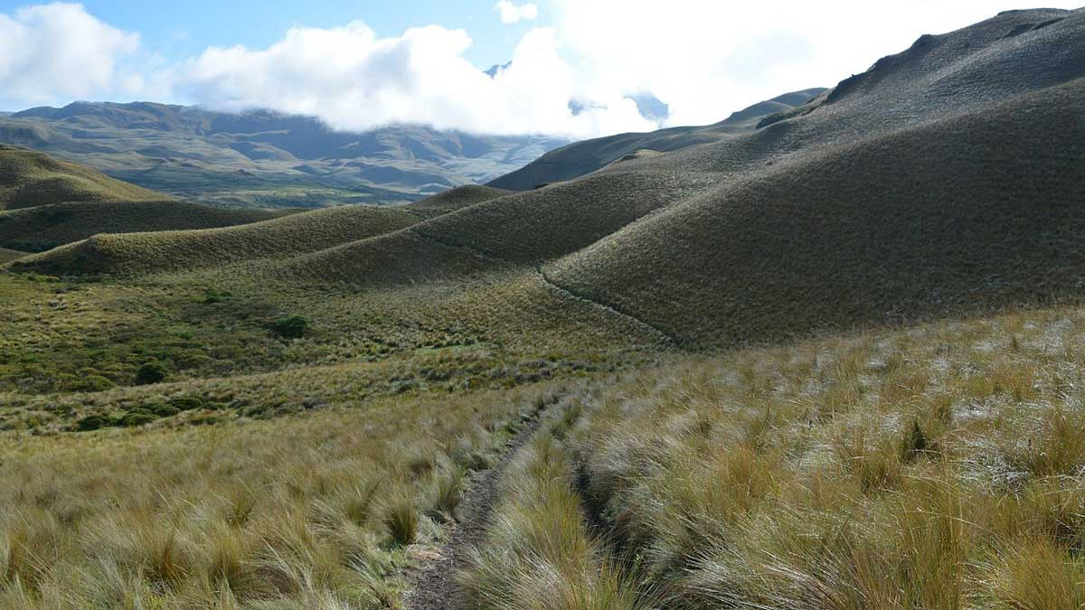 Backroads, Piñan, Ecuador | photo credit: David Sasaki