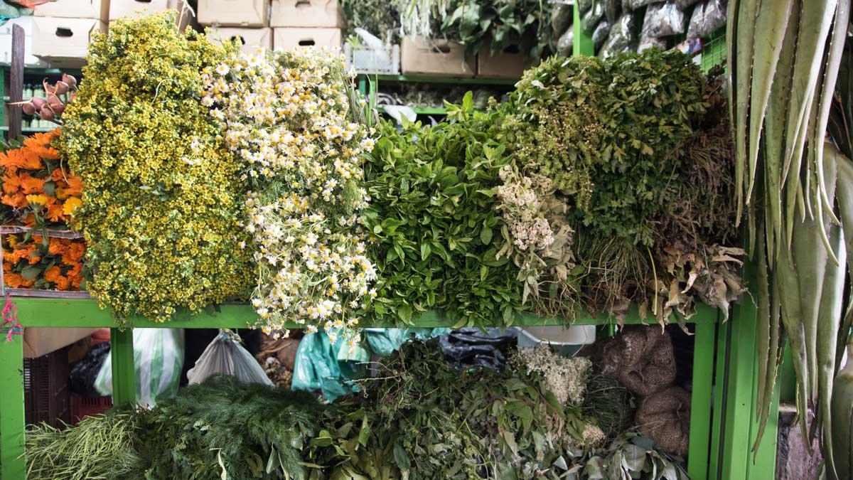 Fresh Herbs from the Plaza Mercado de Paloquemao   ©Angela Drake