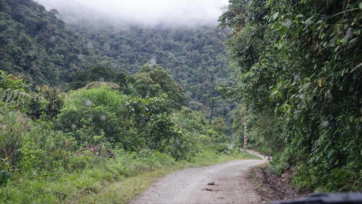 Paseo del Quinde, Nono to Mindo, Ecuador | ©Angela Drake
