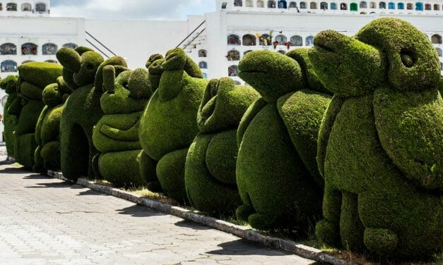 The Spectacular Topiaries of Tulcan