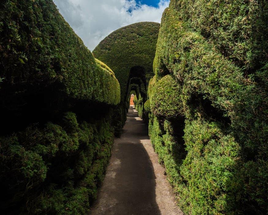 Topiary Tunnel, Tulcan Cemetery, Ecuador | © Ernest Scott Drake
