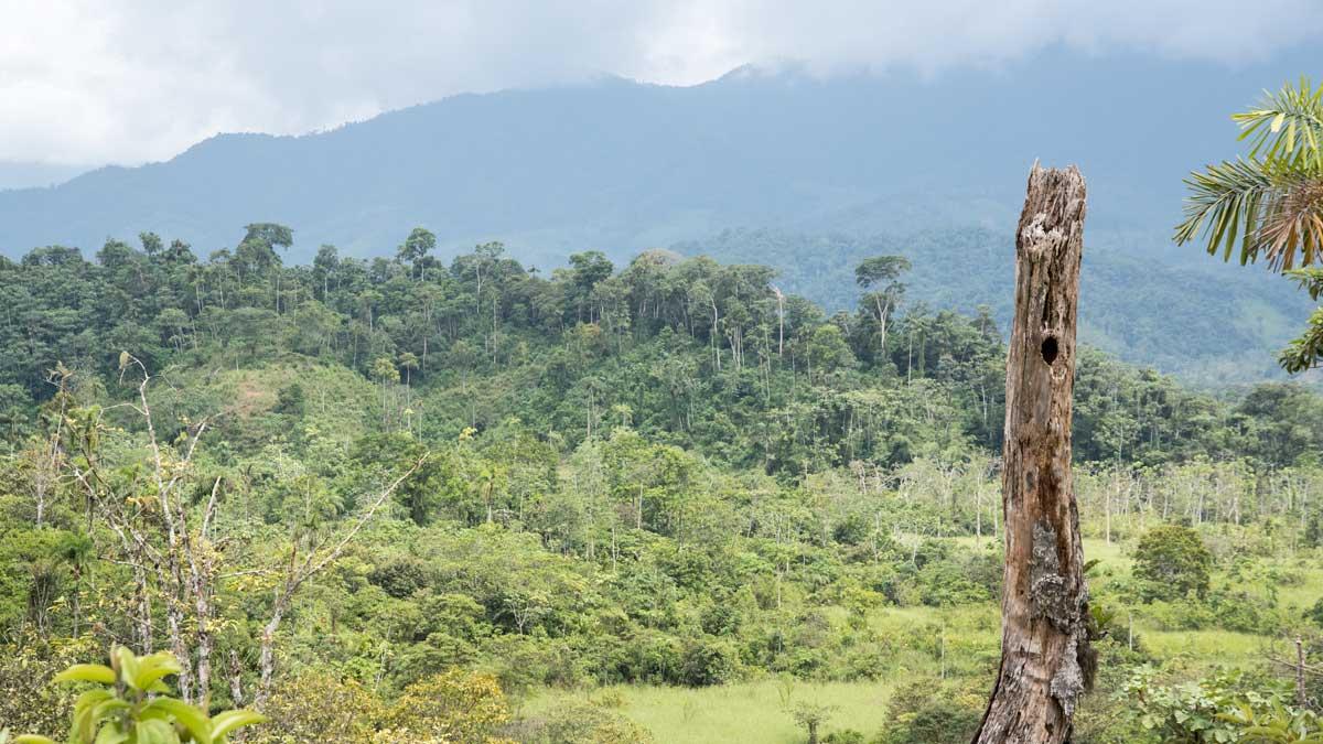 The foothills on the way to Cabañas Yankuam, Ecuador | ©Angela Drake