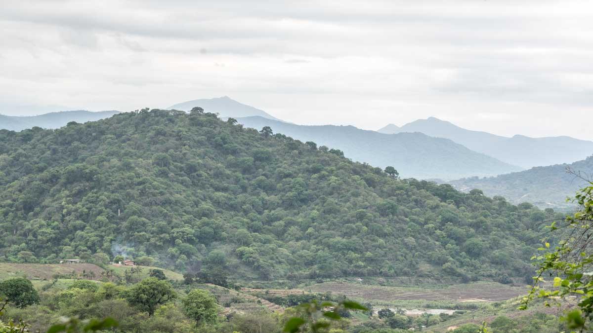Looking towards Peru from the Jorupe Reserve, Macará, Ecuador | @Angela Drake