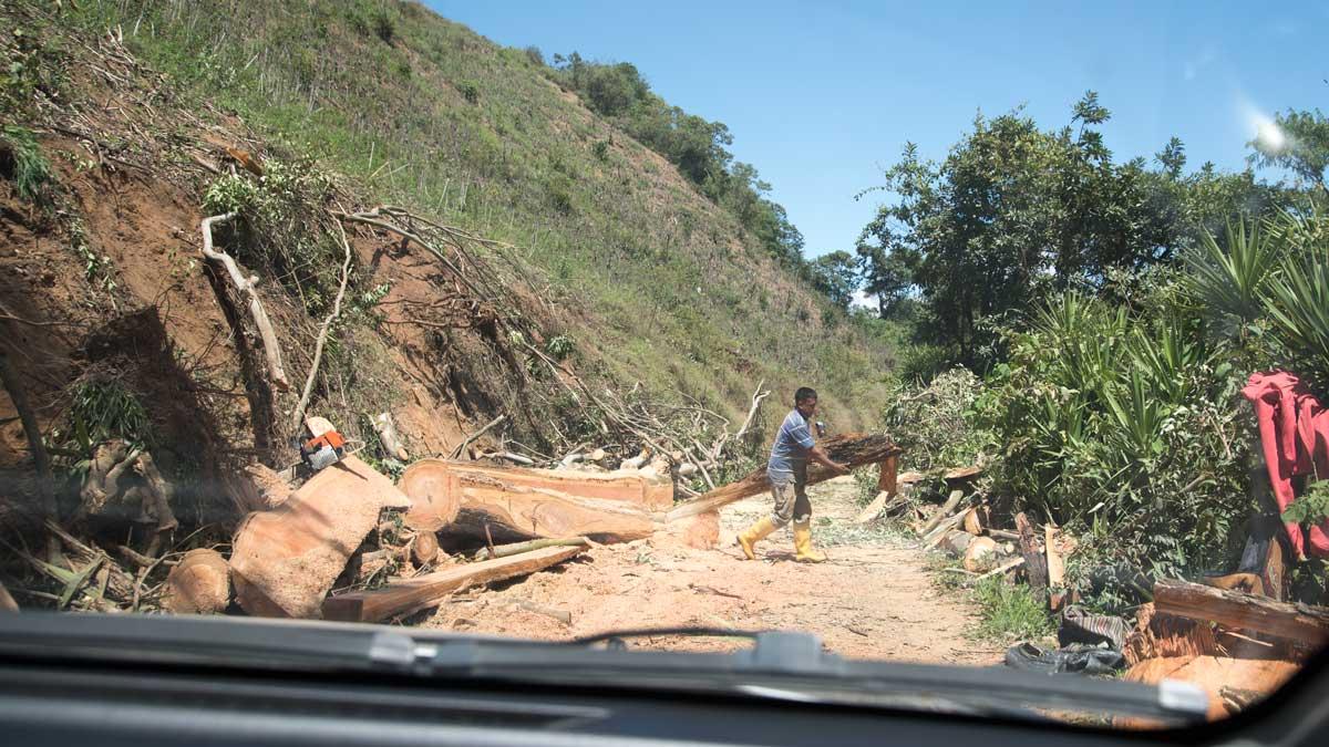 Clearing the road near San Antonio, Ecuador | ©Angela Drake