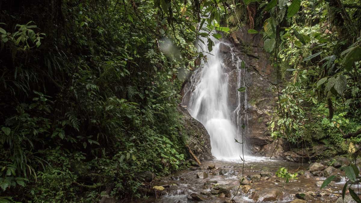 Waterfall that feeds into Cascada Plano Rumi, Ecuador   ©Angela Drake