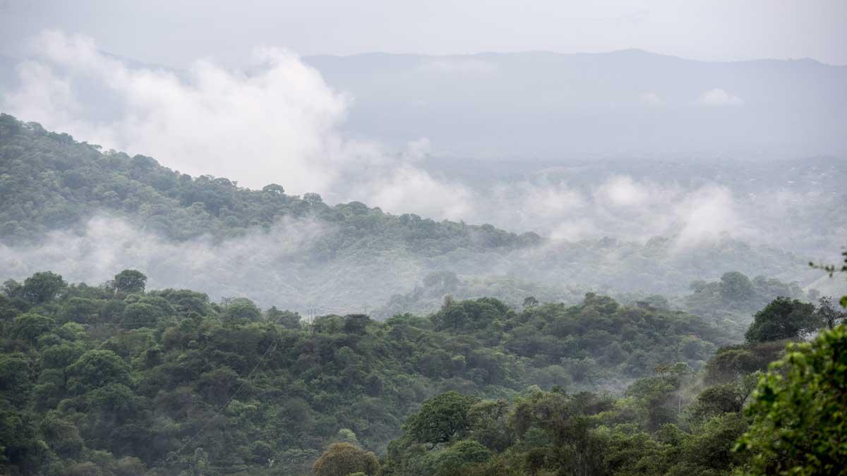 Views from Jorupe, Jorupe Reserve, Ecuador | ©Angela Drake