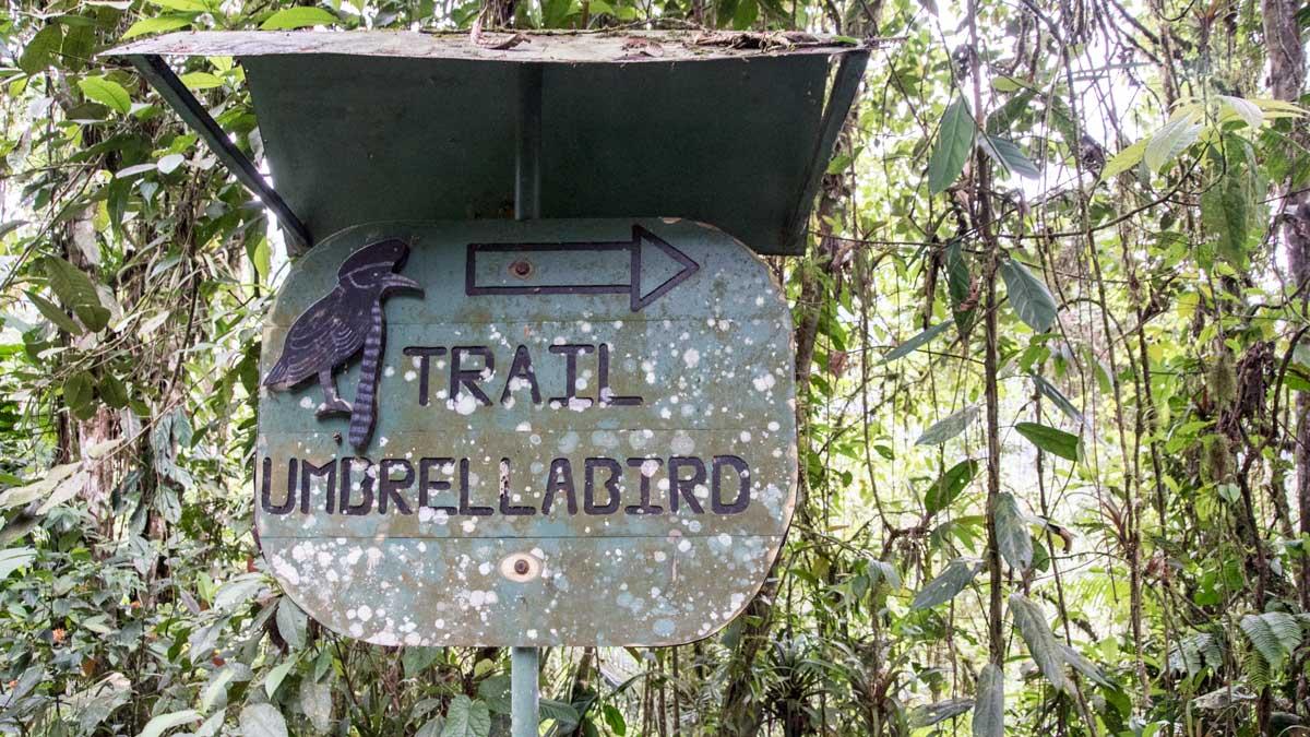 Sign to the Umbrellabird Trail, Buenaventura Reserve, Ecuador   ©Angela Drake