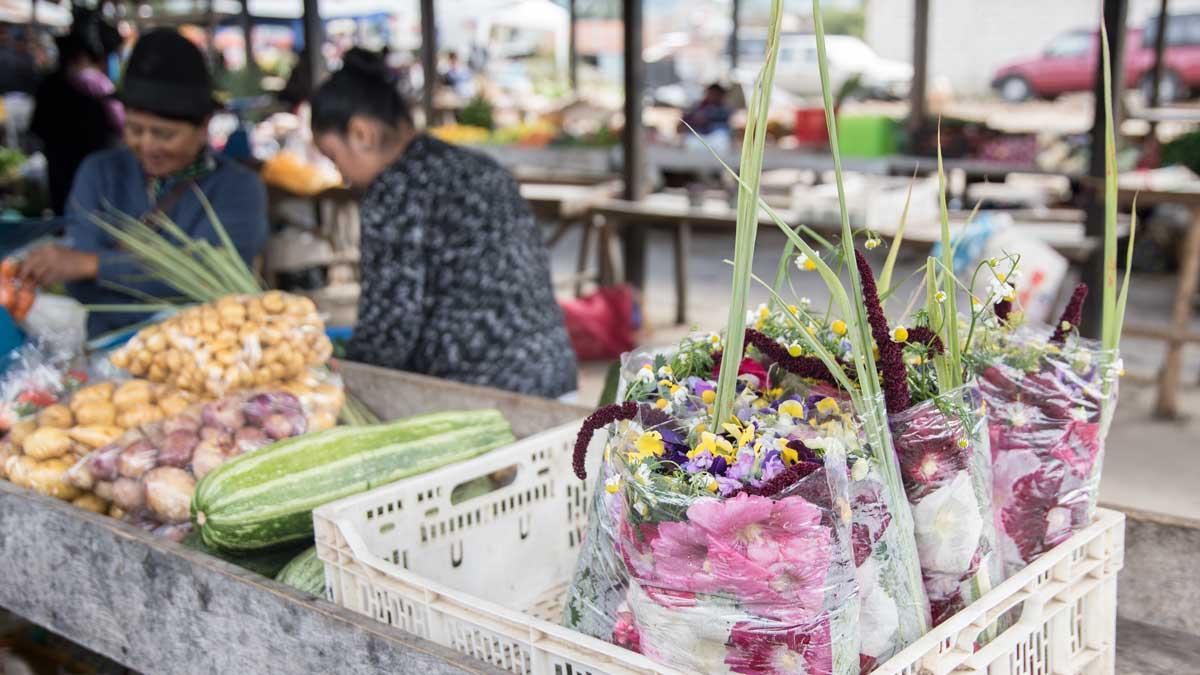 Horchata Flowers for sale at the Saraguro Sunday Market | ©Angela Drake