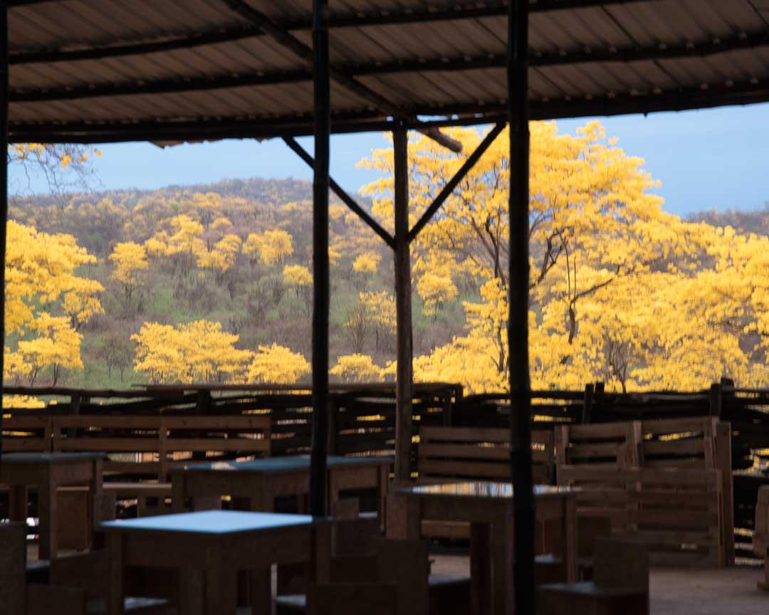 View from the Mangahurco Campground, Loja, Ecuador   ©Angela Drake