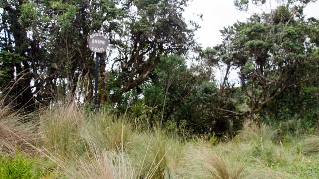 Can you see the Andean Snipe Trail Sign?   ©Angela Drake