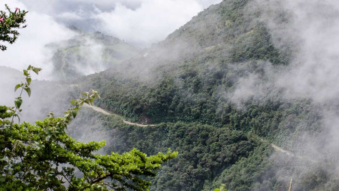View from the Andean Snipe Trail, Yanacocha Reserve, Ecuador   ©Angela Drake
