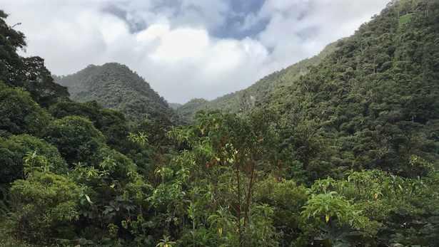 High Altitude Hiking, Imbabura, Ecuador   ©Becky Wandell