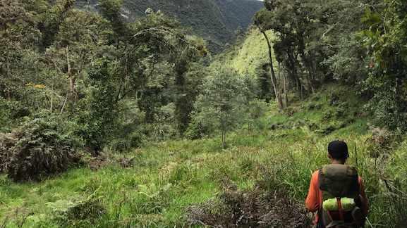 Hiking to Laguna Puruhanta, Imbabura, Ecuador   ©Becky Wandell