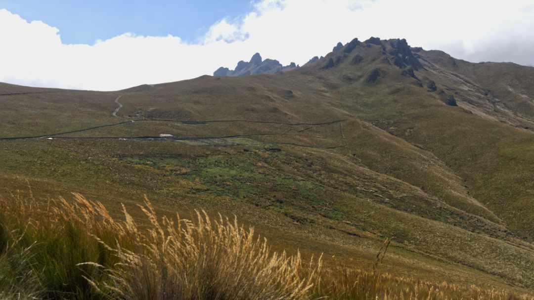 Almost to the Cerro Puntas Trailhead | ©Angela Drake