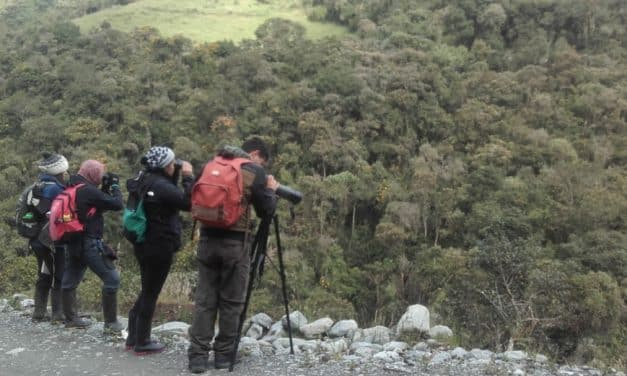 The 2020 World Count in Llanagantes National Park