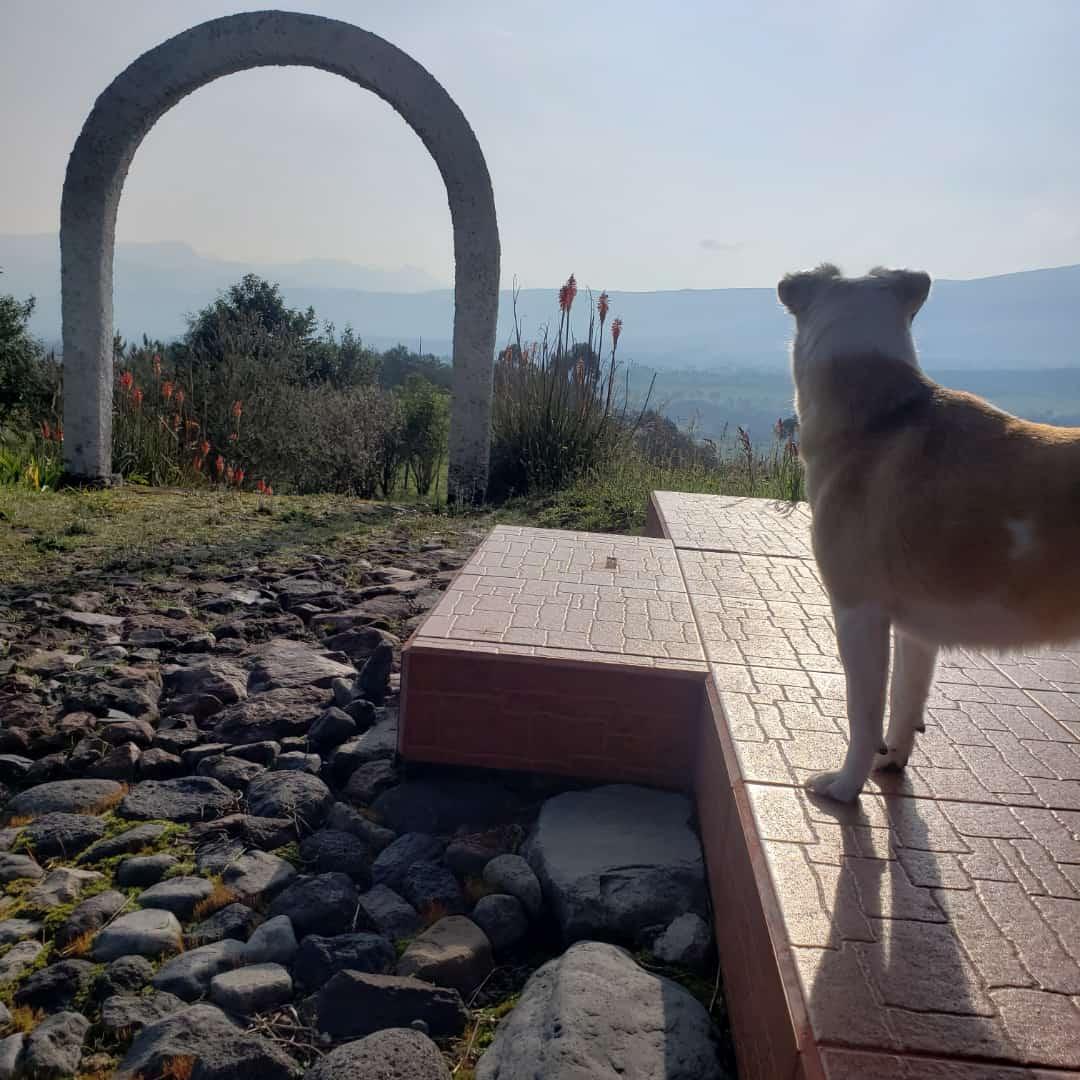 Balcony to Cotopaxi | ©Jacqueline Granda